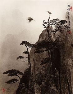 Don Hong-Oai - Inspiration from Masters of Photography