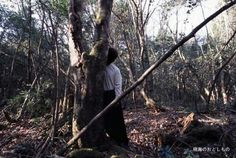 Aokigahara Forest in Japan has around 50 to 100 suicides a year. Military and police sweep the forest area once a year to recover as many bodies as they can find.