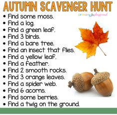 Scavenger Hunts Primary Playground