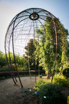 Botanical Garden Of The Ozarks | Fayetteville, Arkansas | Crown