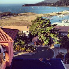 Martinique Resort