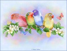 Pretty Birds......