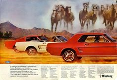 mustang Car ads   old car ads home   old car brochures   old car manual project ...