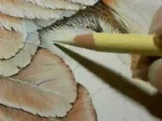 """Painting A Day Demonstration - Hen and Chick by Roberta """"Roby"""" Baer PSA - YouTube"""