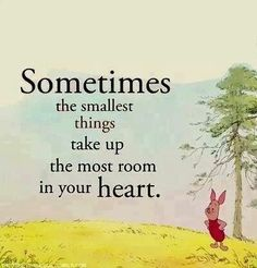 """""""Sometimes the smallest things take up the most room in your heart."""""""
