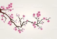 Possible cherry blossom branch design for behind Fur Elise tattoo. Blossom Trees, Blossom Flower, Flower Art, Japanese Blossom, Japanese Cherry Tree, Cherry Blossom Drawing, Cherry Blossom Vector, Cherry Flower, Cherry Blossoms