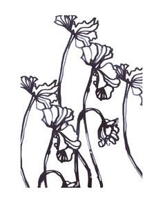 Ink Cyclamen Wall Art Prints by Sonal Nathwani | Minted