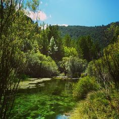 Rio Tajo  Www.wildswimspain.co.uk  #wildswimming #espanol  #espana  #estaes_espania  #spain_loves_nature