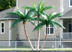 Artificial Palm Trees - Pricing | Tropical Palm Trees
