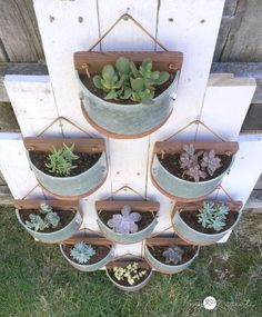 This beautiful wall of succulent planters started out life as an old bathroom light fixture.