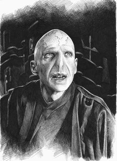 Lord Voldemort by maya-Notliketheother on deviantART Harry Potter Portraits, Harry Potter Artwork, Harry Potter Pictures, Harry Potter Drawings, Harry Potter Villains, Harry Potter More, Saga Harry Potter, Harry Potter Hogwarts, Lord Voldemort