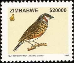 Cut-throat Finch stamps - mainly images - gallery format