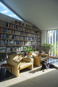 A certified passive house completed recently in South Dublin It was designed as a four bed home/office. The limited access corner garden site with good. Plant Rooms, Room With Plants, Garden Site, Corner Garden, Passive House, Home Office, Architects, Bookcase, Shelves