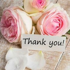 Thank you so much to all the amazing contributors on this board, I truly appreciate you all, taking the time to share your fabulous pin here, and helping to make this board awesome. You all are the best, xo Lucia Thank You Messages Gratitude, Thank You Wishes, Thank You Quotes, Thank You Cards, Happy Birthday Wishes, Birthday Greetings, Birthday Cards, Bisous Gif, Thank You Images