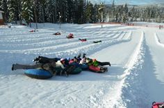 Come winter, the Snow Tube & Adventure Park at #Skibowl is the perfect thing to do with the kids. Snow tubing, Frosty's Playland, hot chocolate and more in this winter wonderland. www.skibowl.com