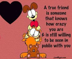 True friends funny quotes