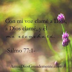 Con mi voz clamé a Dios, a Dios clamé, y él me escuchará. Salmo 77:1…
