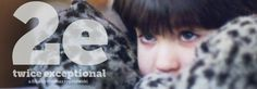 2e: Twice Exceptional (2015) - a documentary on gifted students with learning disabilities