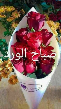 Flowers are very beautiful and it makes my day go so beautiful if i start a day seeing it,especially from love ones. Good Morning Arabic, Good Morning Cards, Good Morning Picture, Good Morning Friends, Good Morning Greetings, Good Morning Good Night, Morning Pictures, Good Morning Wishes, Gd Morning