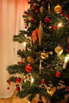 MesaMou - Den perfekta julgranen