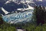 Exit Glacier Trail Seward Alaska,  Billy had to take me when he gets home :)