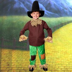Quality Scarecrow from the Wizard of Oz Childs Book Character fancy dress costume - perfect for World Book Day and Film Themed Parties!
