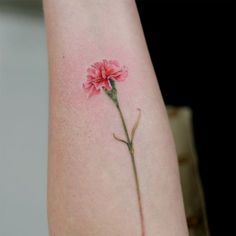Flower tattoos are extremely popular in various kinds, sizes and colours. They have wide range of variety. Japanese flower tattoos are very popular de. Carnation Flower Tattoo, Narcissus Flower Tattoos, Carnation Drawing, Pretty Flower Tattoos, Birth Flower Tattoos, Flower Wrist Tattoos, Small Flower Tattoos, Small Wrist Tattoos, Japanese Flower Tattoo