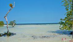 Hacienda Tres Rios Beaches All Inclusive Resorts Riviera Maya Resort Spa Cancun