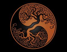 Yin Yang - Deep Personal Wisdom for Personal and Planetary Transformation