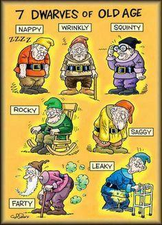 7 Dwarves of Old Age