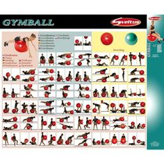 Exercices Swiss Ball, Swiss Ball Exercises, Gym, Workout, Excercise, Stretching, Medicine, Playing Cards, Health Fitness