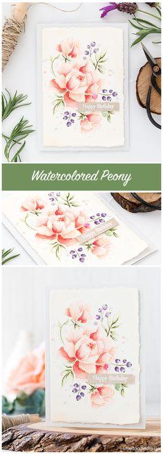 Soft Watercolored Peony