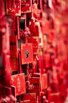 Suzhou Tongli - 苏州 Names at a temple entry Suzhou China © Philippe LEJEANVRE. All rights reserved. In China, China Trip, Simply Red, Photocollage, Suzhou, Aesthetic Colors, Red Walls, Shades Of Red, Chinese New Year
