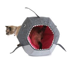 Look what I found at UncommonGoods: shark cat bed... for $99 #uncommongoods