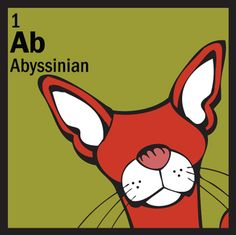 abyssinian in chemistry