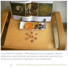 Loose parts provocation in 2-3 year old classroom. Reggio Inspired Practice. by…