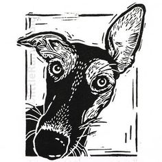 image of Whippet dog. Original linocut, hand cut and printed on hand press in black ink. Signed and titled in pencil. PERSONALISE YOUR PRINT. Gary can replace the dog breed title on the print with your own dogs name if you so wish. Linocut Prints, Art Prints, Block Prints, Lino Art, Linoprint, Wood Engraving, Art Plastique, Woodblock Print, Dog Art
