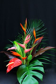 Flowers Discover Premium Tropical Mix (Small) Tropical Taste - Hana Tropicals-Buy Tropical Flowers Fresh From Maui