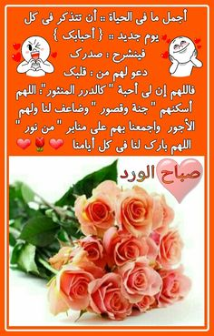 0d4927bc6 33 Best صباح الخير images in 2015 | Arabic Quotes, Bonjour, Good morning