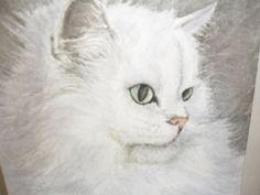 Hey, I found this really awesome Etsy listing at https://www.etsy.com/listing/513374174/white-cat-long-hair-watercolour-painting