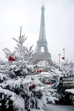 Paris in the winter! <3