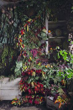 Abandoned Detroit Duplex Filled with 36,000 Flowers - BOOOOOOOM! - CREATE * INSPIRE * COMMUNITY * ART * DESIGN * MUSIC * FILM * PHOTO * PROJECTS