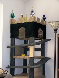 Spoil your cat, build a fort! At least some of them are really ingeniuos.