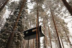 Treehouse Retreats - The Tree Hotel, Cabin