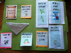 Learning and Growing the Piwi way: Plant Science Lapbook and Unit study