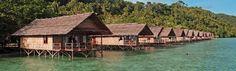 Papua Explorers resort, Raja Ampat. 7 netter, 10 dykk, all-inclusive: 13000 kr pr pers