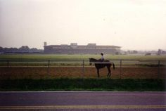 Bowie Racetrack.. feels like home <3