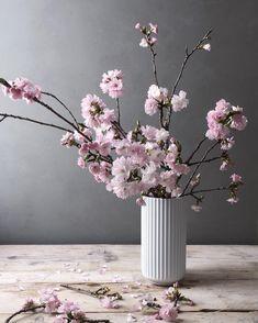 Beautiful decoration in the white Lyngby vase. Japanese Home Decor, Japanese House, Flower Vases, Flower Arrangements, Scandi Living, Blossom Flower, Ikebana, Table Centerpieces, Purple Flowers