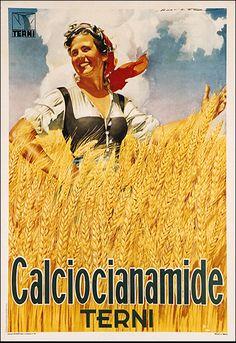Holzer Italia - Anno1948