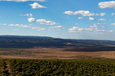 It is Brown - Addo Landscape It is Brown - Addo is a town in Sarah Baartman District Municipality in the Eastern Cape province of South Africa. Region east of the Sundays River, some 72 km northeast of Port Elizabeth.